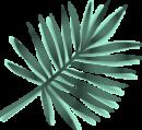 emerald-palm